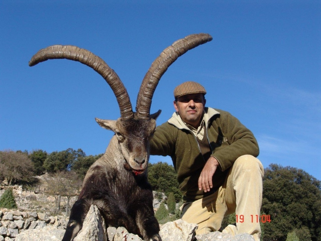 Beceite jagd in spanien