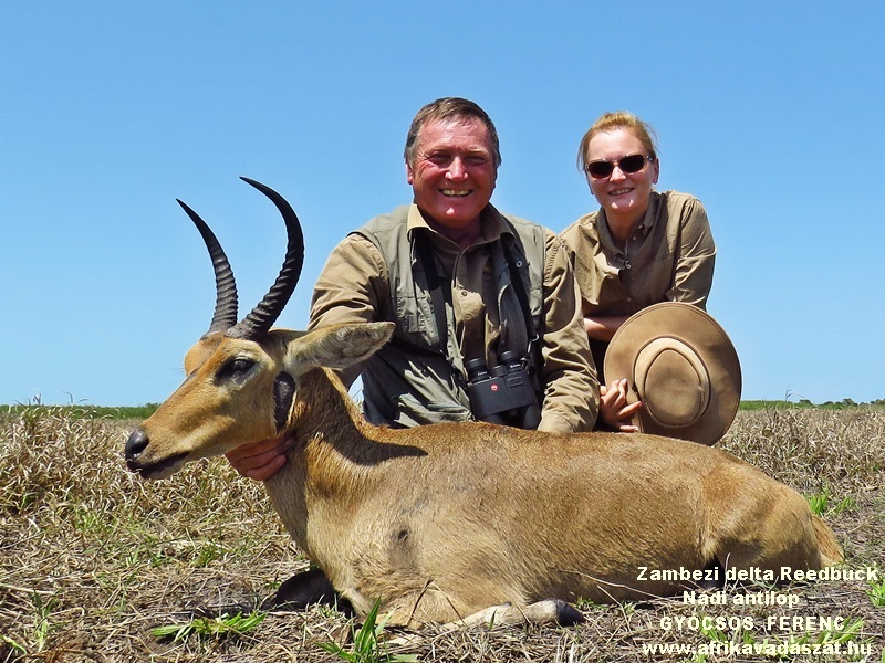 1Reedbuck, Nádi antilop