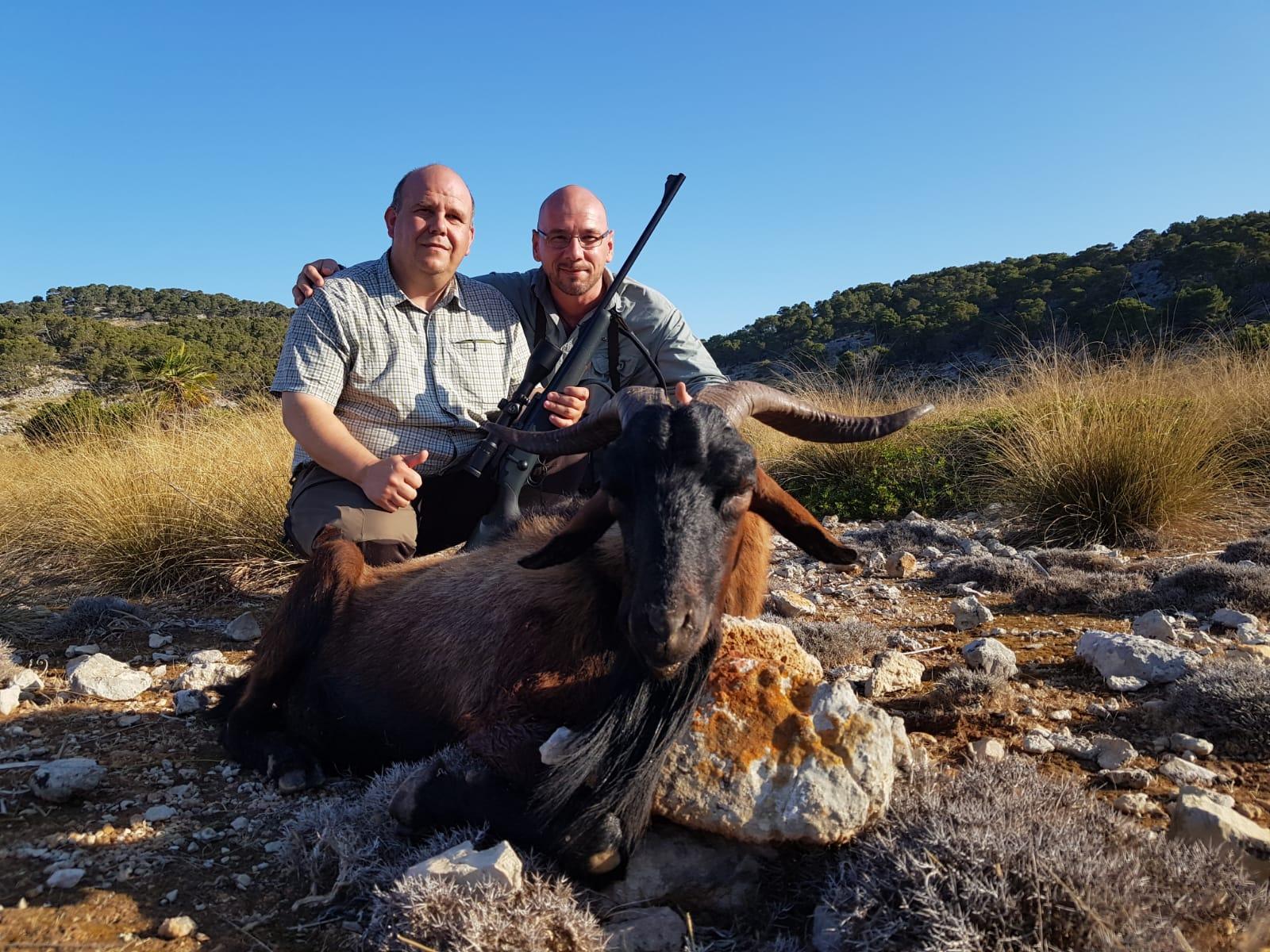Boc Balear en Mallorca
